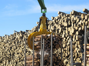 EXSTEL timber grab type EXB-GT